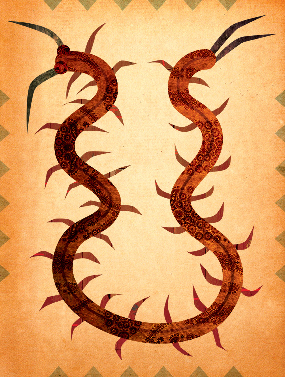 african-centipede-foolishfire